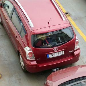 Jag vill hitta föraren som skrapade min bil och lämnade färjan.